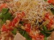 Ensalada atún aceite salpicón frutas verduras