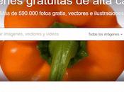 Pixabay: miles imágenes gratuitas para usar blog