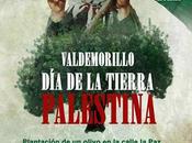 Tierra Palestina 2016