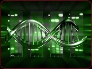 ADN y su manipulación