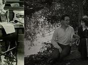 """Harold Lloyd tenorio tímido"""""""