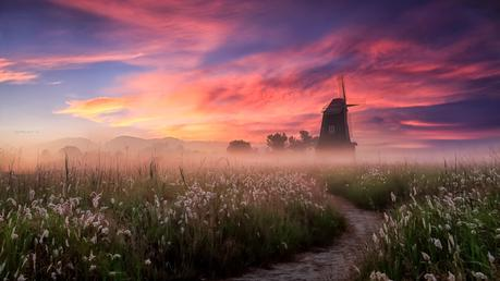 Misty morning de Jaewoon U en 500px.com