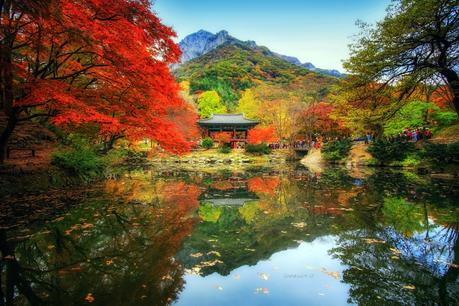 Autumn Reflection de Jaewoon U en 500px.com