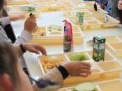 AlleREACT: registra reacciones alérgicas alimentos