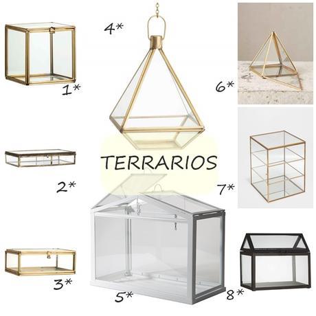 DECORANDO CON... TERRARIOS