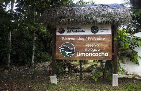 Limoncocha, la laguna irreductible