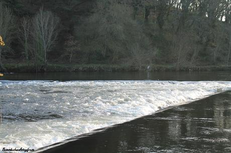 A la orilla del rio