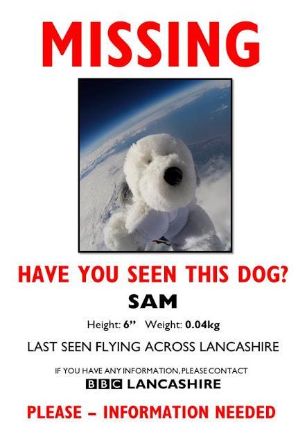 Más que curioso... galáctico !! (VI) : #FindSam