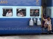 Trenes tranvías