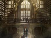 Primer trailer BESTIAS FANTÁSTICAS DONDE ENCONTRARLAS, Spin-Off Harry Potter Eddie Redmayne