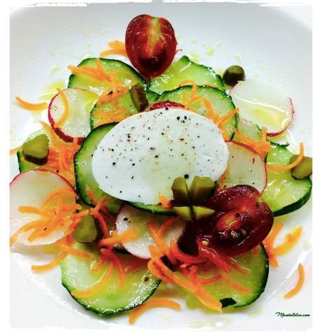 ensalada-de-pipino-con-rabanitos-fileteados-zanahoria-y-mozzarella_Fotor
