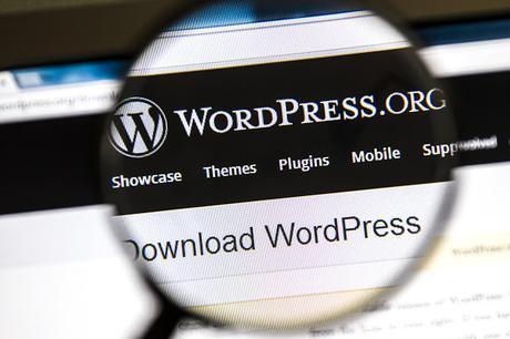 Si ya has decidido que tu blog va a estar en Wordpress y ...