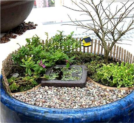 visto por internet jardines en miniatura - Jardines En Miniatura