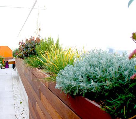 Terraza Jardín para el Mes Mundial de la Arquitectura del Paisaje