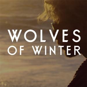 BIFFY CLYRO - Wolves of Winter