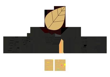 familytreekids logo
