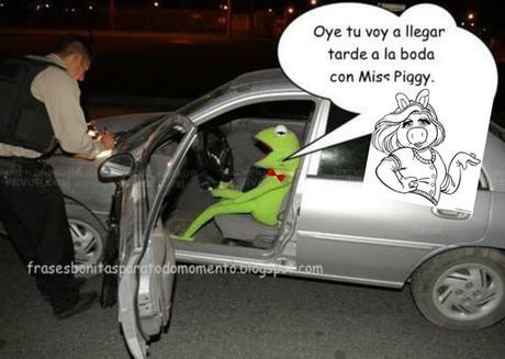 Oye tu voy a llegar  tarde a la boda  con Miss Piggy.