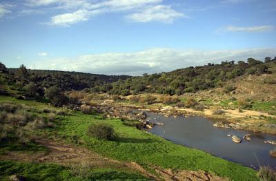 Parques de España II