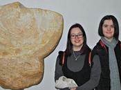 Museo oiasso