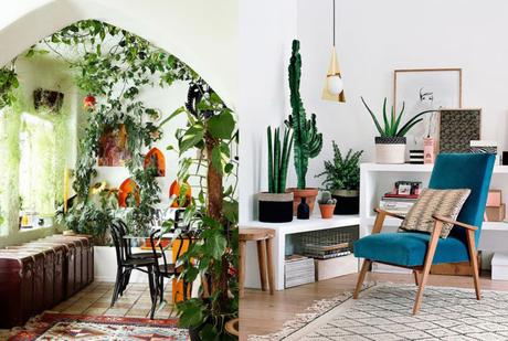 17 ideas para decorar tu sala de estar con plantas en esta for Ideas para decorar tu sala comedor