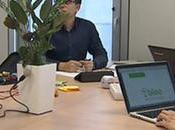 macetas Bioo Lite ofrecen posibilidad obtener energía plantas para cargar móvil cualquier otro dispositivo tecnológico similar