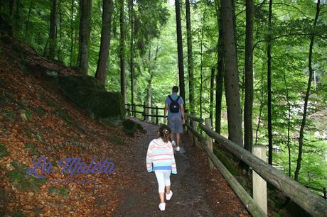Paseando de camino a las cataratas de Triberg, Alemania