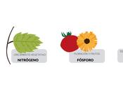 Abonos ecológicos: Tipos, usos aplicaciones