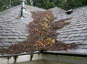 techo dañado peligroso.