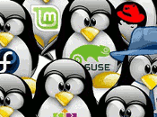 introducción mundo Linux para nuevos usuarios