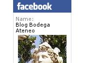 Visita Bodegas Ismael Arroyo