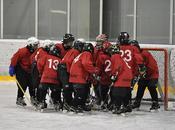 Hockey Hielo: Diario viaje. Objetivo: Mannheim