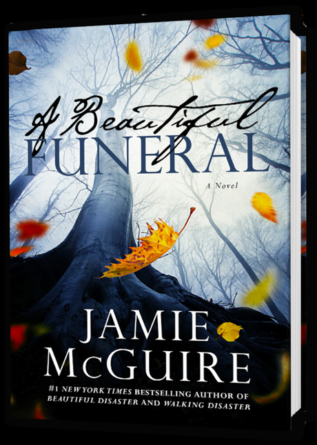 Beautiful-Funeral-3D-book.png