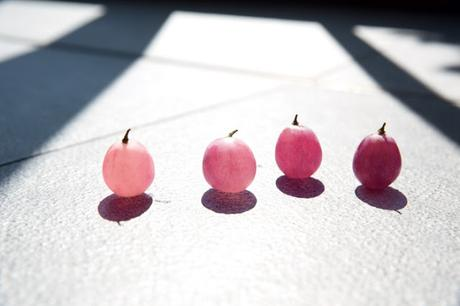 La Paleta de Deliciosos Rosas de la Gama Vinosource con Agua de Uva Bio de Caudalíe