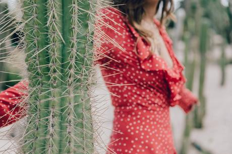 Realisation_Par_Dress-Star_Print-Red_Dress-Outfit-Catonier-Hat-Lack_Of_Color-Black_Sandals_Topshop-Barcelona-Collage_Vintage-Mossen_Gardens-130