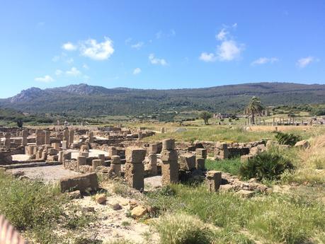 Ruinas de Baelo Claudia, cadiz, turismo