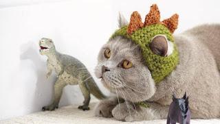 Gatos y dinosaurios