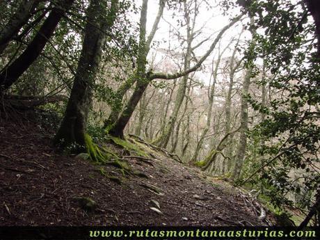 Ruta al Cueto el Fraile (1.875 m.) desde Riomolín, Cangas del Narcea