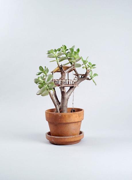 Miniature Treehouses by Jedediah Cowyn Voltz / Casas de árbol miniatura / casahaus.net