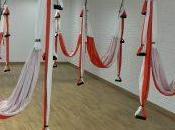 Yoga, Aeroyoga Pilates Experience
