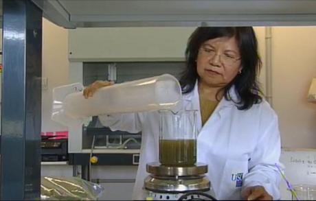 Sálvora. Cosmética sostenible de algas