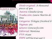 Reseña lugares donde encontrarte, Claudia Gray
