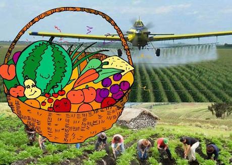 Agricultura ecológica a examen