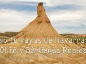 vayas navarra: olite bárdenas reales