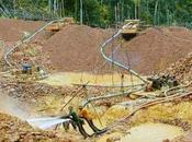 rechaza decreto implementa Arco Minero Orinoco