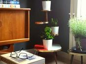 Urban Jungle Bloggers: Plantas casa