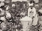 historia movimiento feminista negro Estados Unidos
