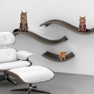 Accesorios & Muebles para Mascotas - Ideas & Mucho mas!!