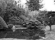 Jardines hermosos mundo (1ra. parte)