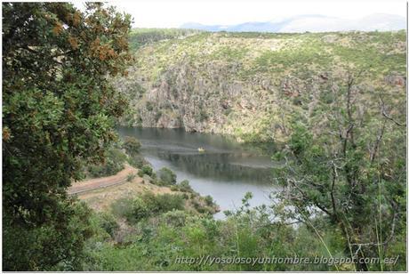Canoas por el río Lozoya