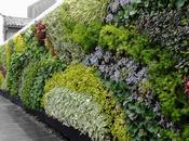Jardines Verticales. Reduciendo Dióxido Carbono.